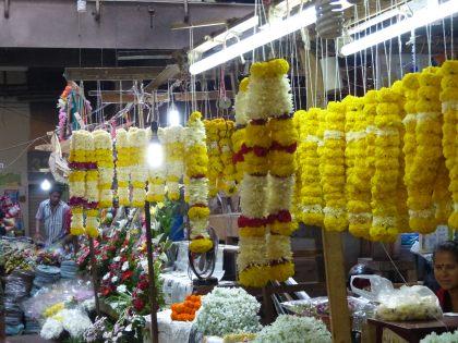 mormugao-goa-panaji-markthalle-7