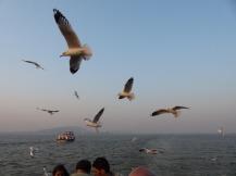 mumbai-moewen