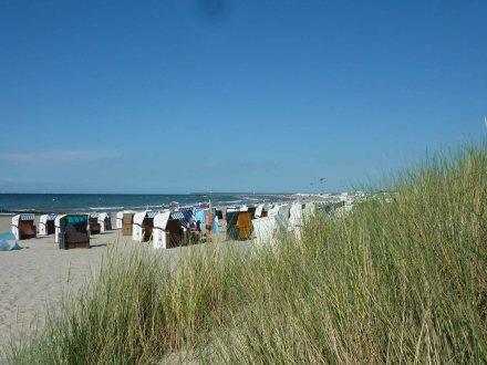 Warnemuende-Strand-Duene-2