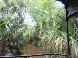 Miami-Everglades-Buggy-3
