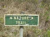 Miami-Everglades-NatureTrail-1