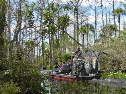 Miami-Everglades-Propellerboot-2