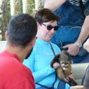 Miami-Everglades-Zoo-3