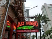 New_Orleans-Canal_Street-1