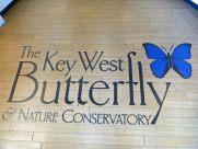 Key_West-Butterfly_Garden-17