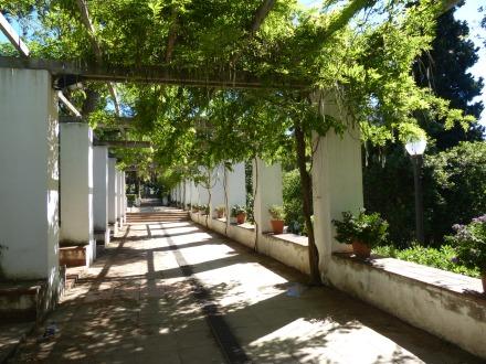Barcelona-Montjuic-Jardins_de_Laribal-1
