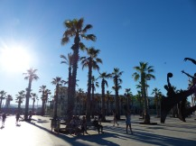 Barcelona-Placa_del_Mar-1