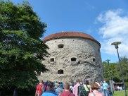 Tallinn-Dicke_Margarethe
