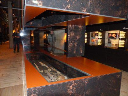 stockholm-vasa_museum-skelett-2