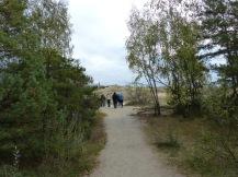 klaipeda-kurische_nehrung-weg_zur_toten_duene-2