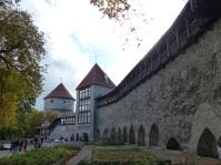 tallinn-domberg-stadtmauer