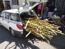 jamaika-bauernmarkt-2