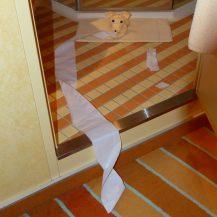 aidaluna-ueberraschung-handtuchtier-hund_spielt_mit_toilettenpapier-1