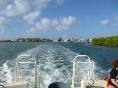 grand_cayman-bootstour-2