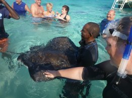 grand_cayman-stingray_city-rochen-2