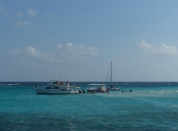 grand_cayman-stingray_city-sandbank-meer