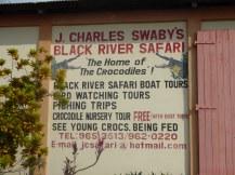 Jamaika-Black_River-Safari-1