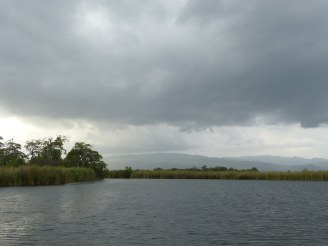 Jamaika-Black_River-Safari-5