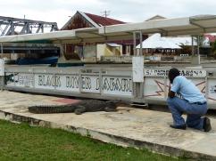 Jamaika-Black_River-Safari-Krokodil-8
