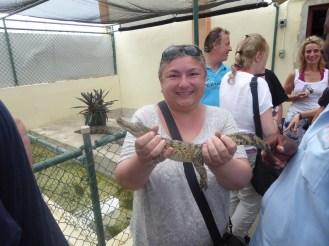 Jamaika-Black_River-Safari-Krokodil_Nursery-wir-1