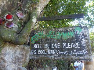 Jamaika-Cool_Jellyman-1