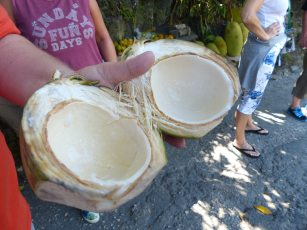 Jamaika-Cool_Jellyman-Kokosnuss-1