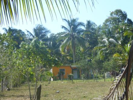 Jamaika-Montego_Bay-Landschaft-1