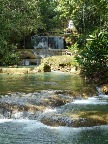 Jamaika-YS_Wasserfaelle-8