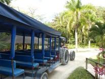 Jamaika-YS_Wasserfaelle-Truck-1