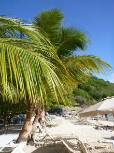 Karibik-St_Kitts-Cockleshell_Bay-Reggae_Beach-5