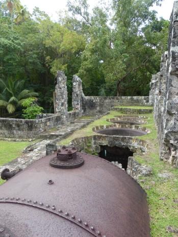 Karibik-St_Kitts-Plantage_Wingfield_Estate-Alte_Rumdestillerie-6