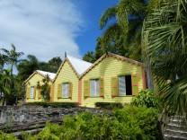 Karibik-St_Kitts-Romney_Manor-Botanischer_Garten-3