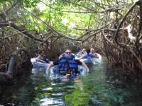 mexiko-xel_ha-tubes-fluss-mangroven-2