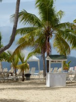 Samana-Cayo_Levantado-Bacardi_Insel-Strand-Palmen-4