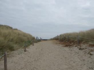 Texel-De_Koog-Duene-1