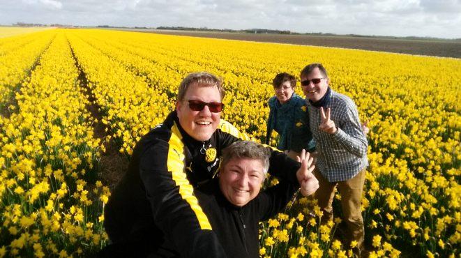 Texel-Narzissenfeld-gelb-wir-6