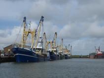 Texel-Oudeschild-Hafen-1