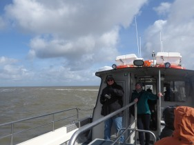 Texel-Oudeschild-Seehundfahrt-2