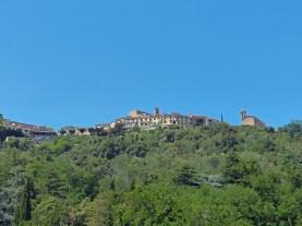 Elba-Poggio-1