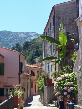 Elba-Poggio-Altstadt-5