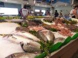Spanien-Palamos-Fischmarkt-Fisch-1