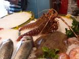 Spanien-Palamos-Fischmarkt-Fisch-2