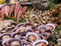 Spanien-Palamos-Fischmarkt-Fisch-6