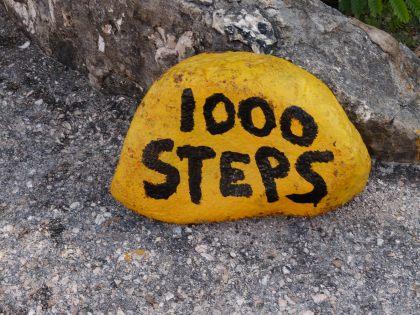 Bonaire-1000_Steps-2