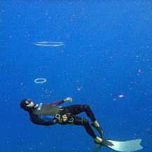 Bonaire-Schnorcheln-Unterwasserwelt-Taucher-1