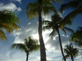 Curacao-Mamboo_Beach-17