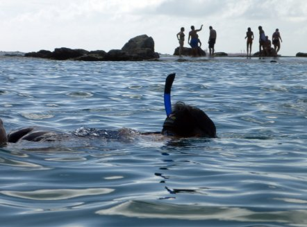 Curacao-Mamboo_Beach-Schnorcheln-5