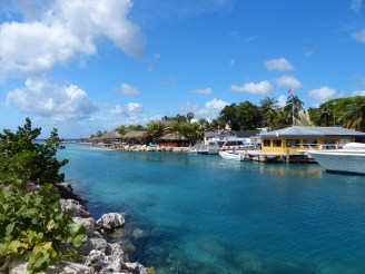 Curacao-Sea_Aquarium-Beach-2