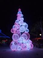 Curacao-Willemstad-Promenade-Weihnachtsbaum-Nacht-1