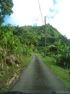 Grenada-Landesinnere-4